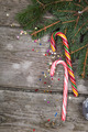Christmas candy and spruce branches - PhotoDune Item for Sale