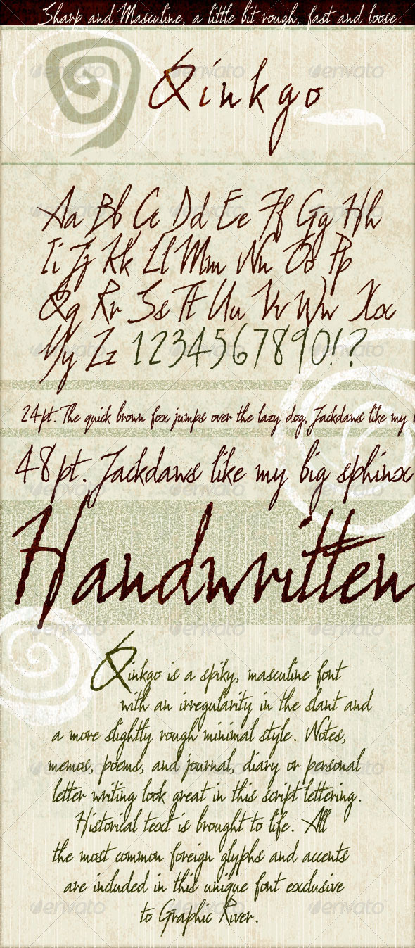 GraphicRiver Qinkgo Sharp & Masculine Handwritten Script 3634105