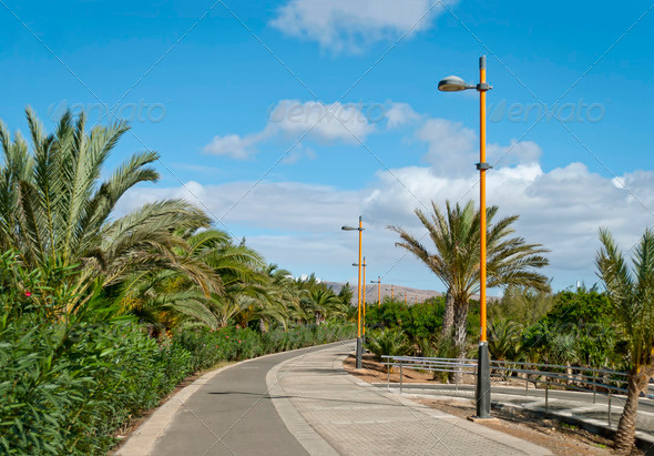 Fuerteventura - Stock Photo - Images