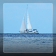 White Sail Yacht In The Morning Sea - VideoHive Item for Sale