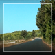 Country Drive - VideoHive Item for Sale