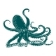 Octopus with Tentacles - GraphicRiver Item for Sale