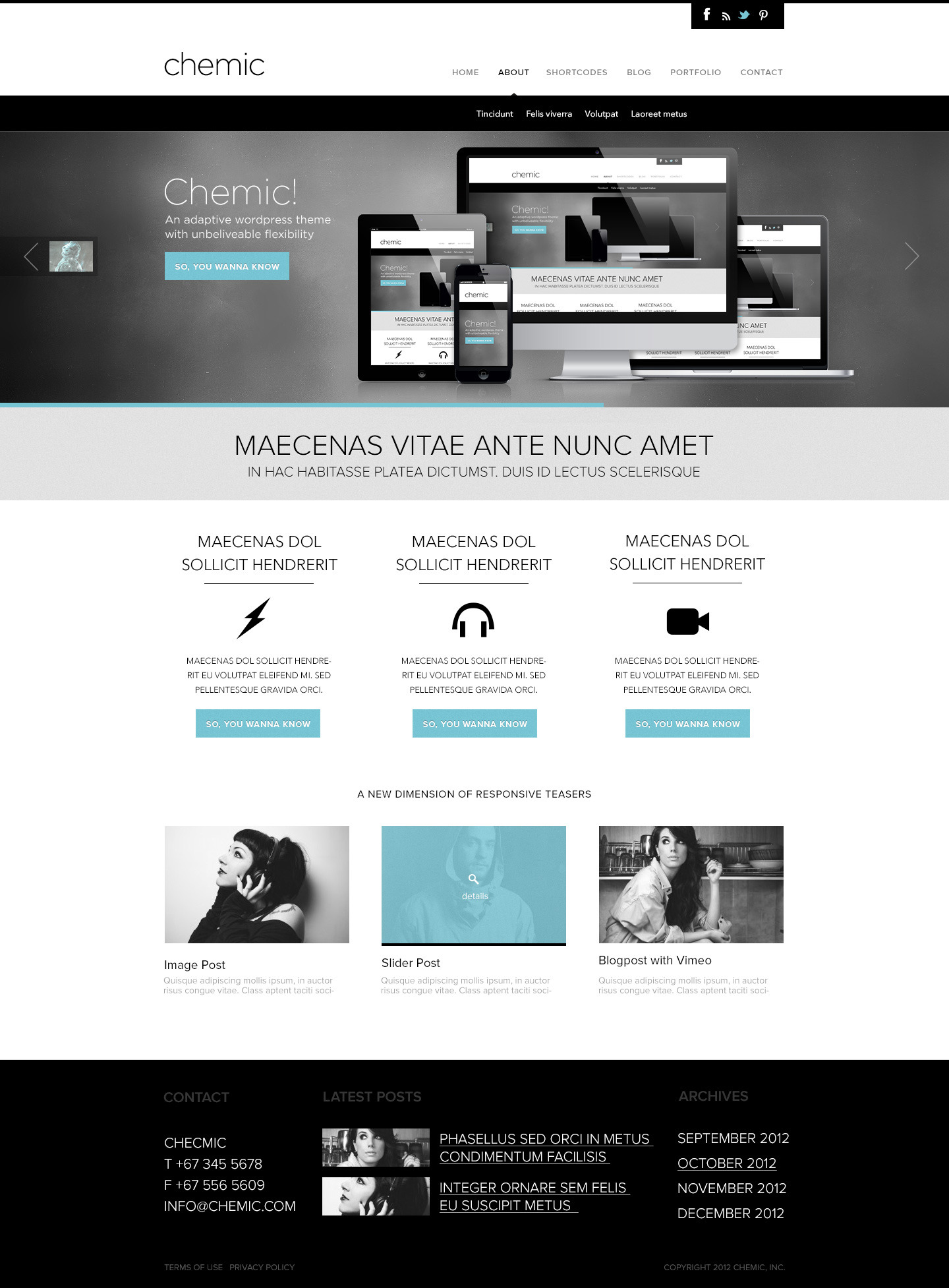Chemic Multi Purpose PSD Template