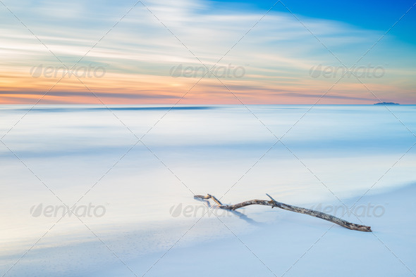 PhotoDune Wood branch on a white beach on twilight sunset 3675649