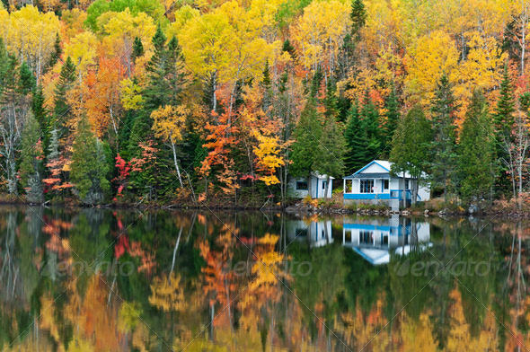 PhotoDune Forest and house Reflections 3675818