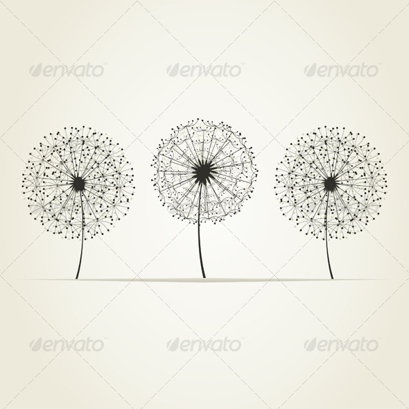 GraphicRiver Three Dandelions 3690600