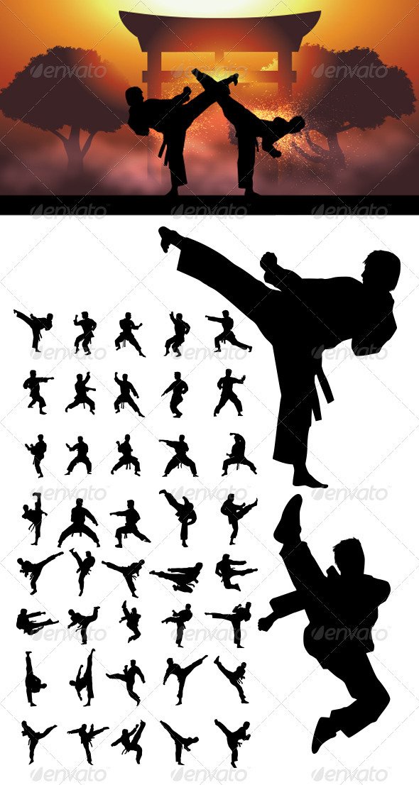 GraphicRiver Taekwondo and Karate Silhouettes 3693083
