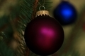 Violet Christmas Bulb - PhotoDune Item for Sale