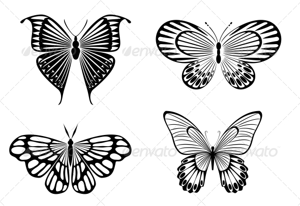 GraphicRiver Butterfly Tattoos 3715230