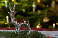 Christmassy Table Decoration - PhotoDune Item for Sale