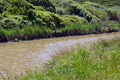 Brown River in Meadow - PhotoDune Item for Sale