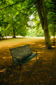 Empty bench in a park - PhotoDune Item for Sale