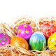Easter eggs in nest - PhotoDune Item for Sale