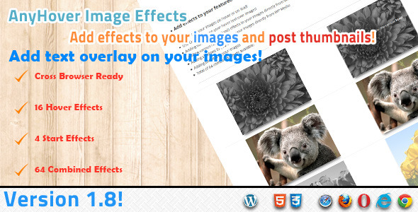 Anyhover Image Effects - CodeCanyon Item for Sale