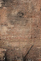 Old Wall Texture - PhotoDune Item for Sale