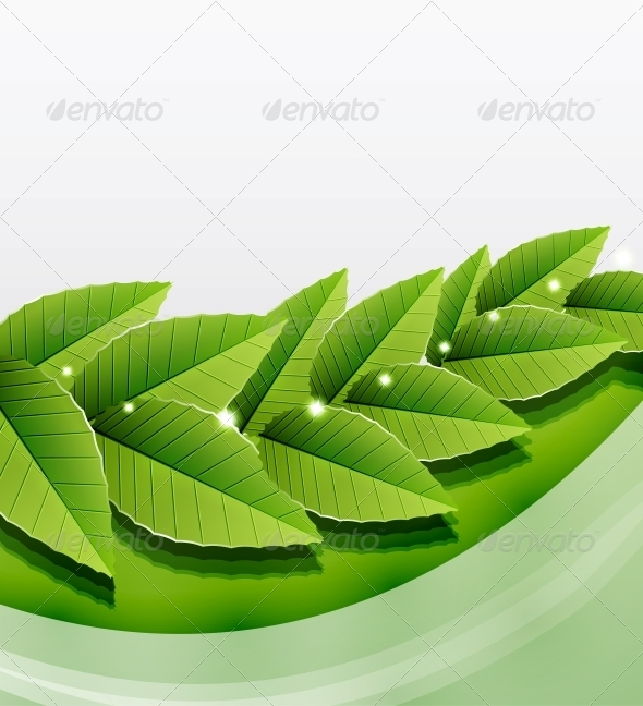 GraphicRiver Green Leaves Nature Background 3782693