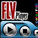 Colorfull Flv Player - ActiveDen Item for Sale