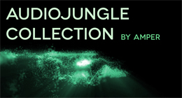 AUDIOJUNGLE COLLECTION BY AMPERMOTION