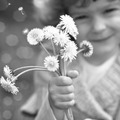 Child with dandelion - PhotoDune Item for Sale