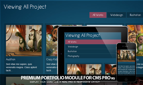 Portfolio Module for CMS pro! - CodeCanyon Item for Sale