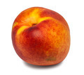Nectarine - PhotoDune Item for Sale