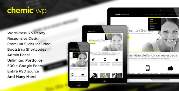 Chemic - Responsive All-In-One WordPress Theme