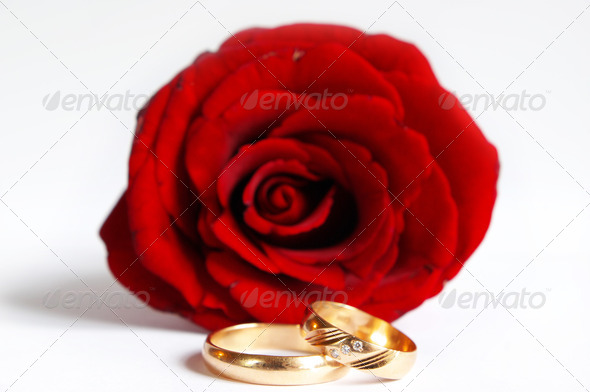 PhotoDune rose and wedding rings 3815160