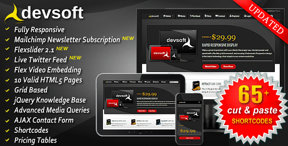 DevSoft - Responsive HTML5 Full Sales Website