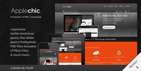 Applechic Responsive Software HTML Template - Software Technology