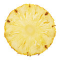 slice of pineapple - PhotoDune Item for Sale