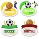 Basketball and Footballs Icons - GraphicRiver Item for Sale