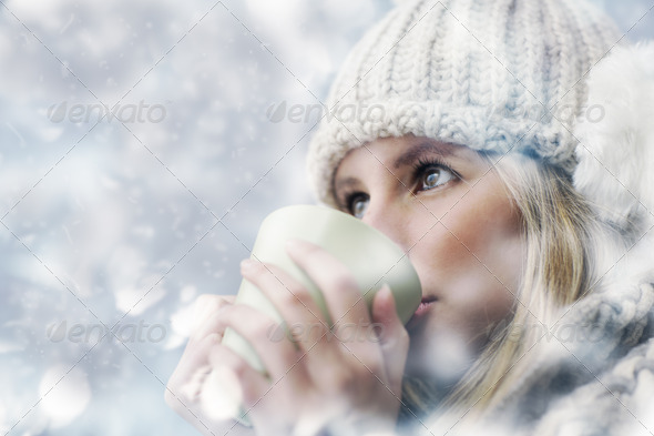 snowy day - Stock Photo - Images