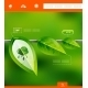 Nature Leaves Infographic Banner - GraphicRiver Item for Sale