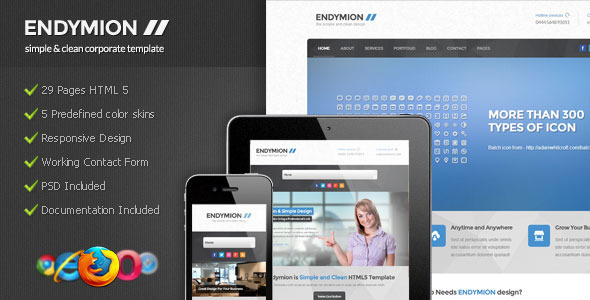 ThemeForest Endymion Simple & Clean Corporate Template 3867355