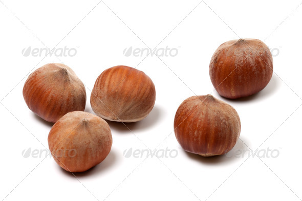 Brown hazelnuts on white background - Stock Photo - Images