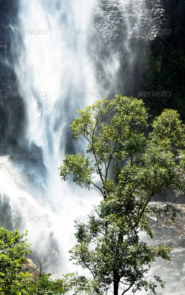 Waterfall on Sri Lanka - Stock Photo - Images