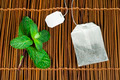 Tea bag and fresh mint - PhotoDune Item for Sale