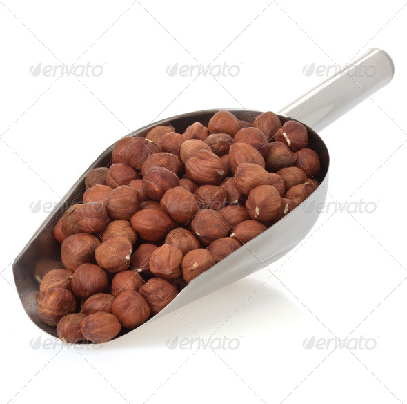 PhotoDune nuts filbert isolated on white 3905716