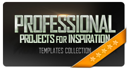 Professional Projects for Inspiration