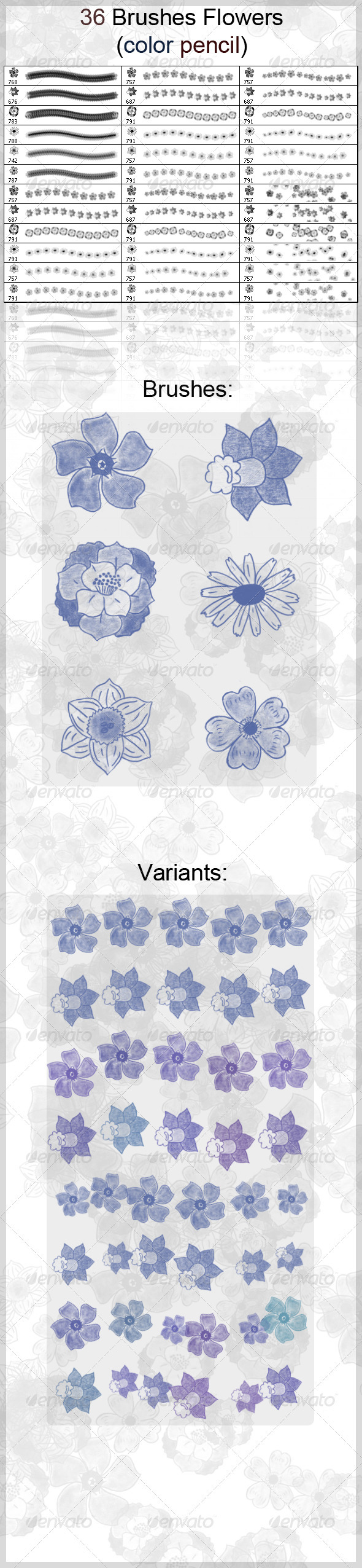 36 Brushes Flowers (Color Pencil) - Flourishes Brushes