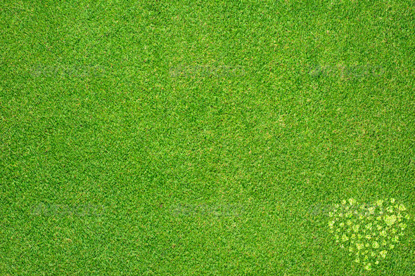 Heart icon on green grass background - Stock Photo - Images