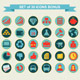 Infographic Elements - GraphicRiver Item for Sale