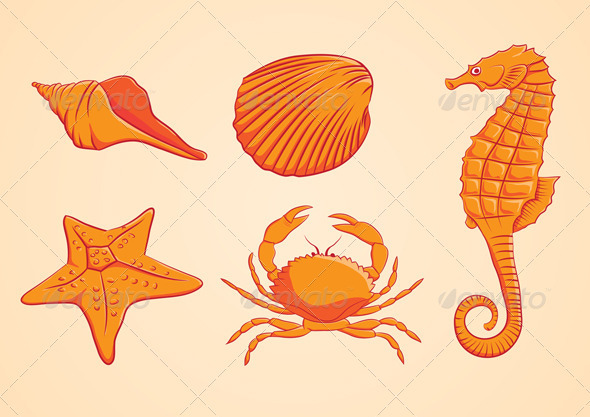 GraphicRiver Sea Animal Orange 3940091