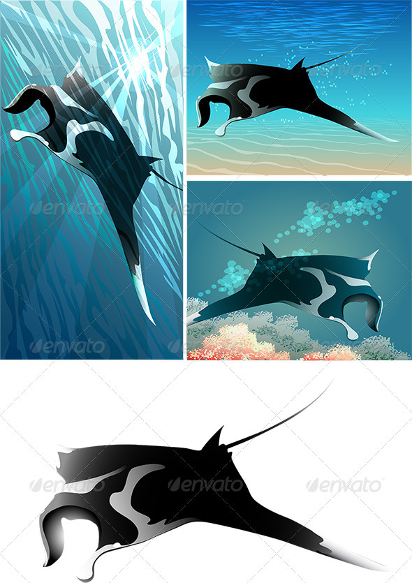 GraphicRiver Manta Ray Set 3952452