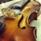 Mystic Oriental Violin