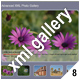 ADVANCED XML IMAGE GALLERY -v8 - ActiveDen Item for Sale