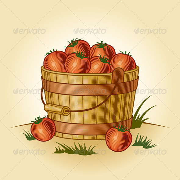 GraphicRiver Retro Bucket Of Tomatoes 3993499