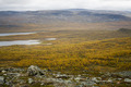 Tundra of Northern Lapland - PhotoDune Item for Sale
