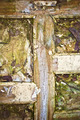 Dirty grunge door with wet leaves - PhotoDune Item for Sale