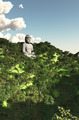 Forrest Buddha  - PhotoDune Item for Sale